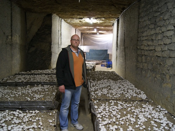 Ludovic barré exploitation champignons