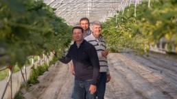 famille Bécuwe serre agricole