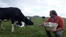 Pierre Yves Dubruille et vache