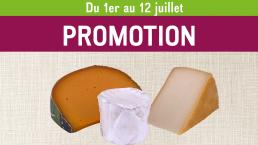 3 fromages sur un fond de toile